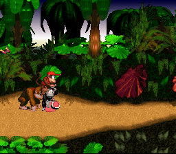 Donkey Kong Country - what the heck am I doing here? - User Screenshot